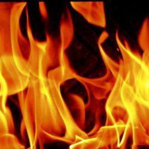 Καίει ανεξέλεγκτα η φωτιά στην Θήβα – Φτάνει στα όρια της Αττικής
