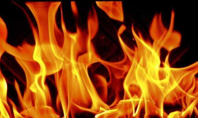 Εισαγγελική παρέμβαση για τις φωτιές – Υπόνοιες για οργανωμένη εγκληματική δραστηριότητα