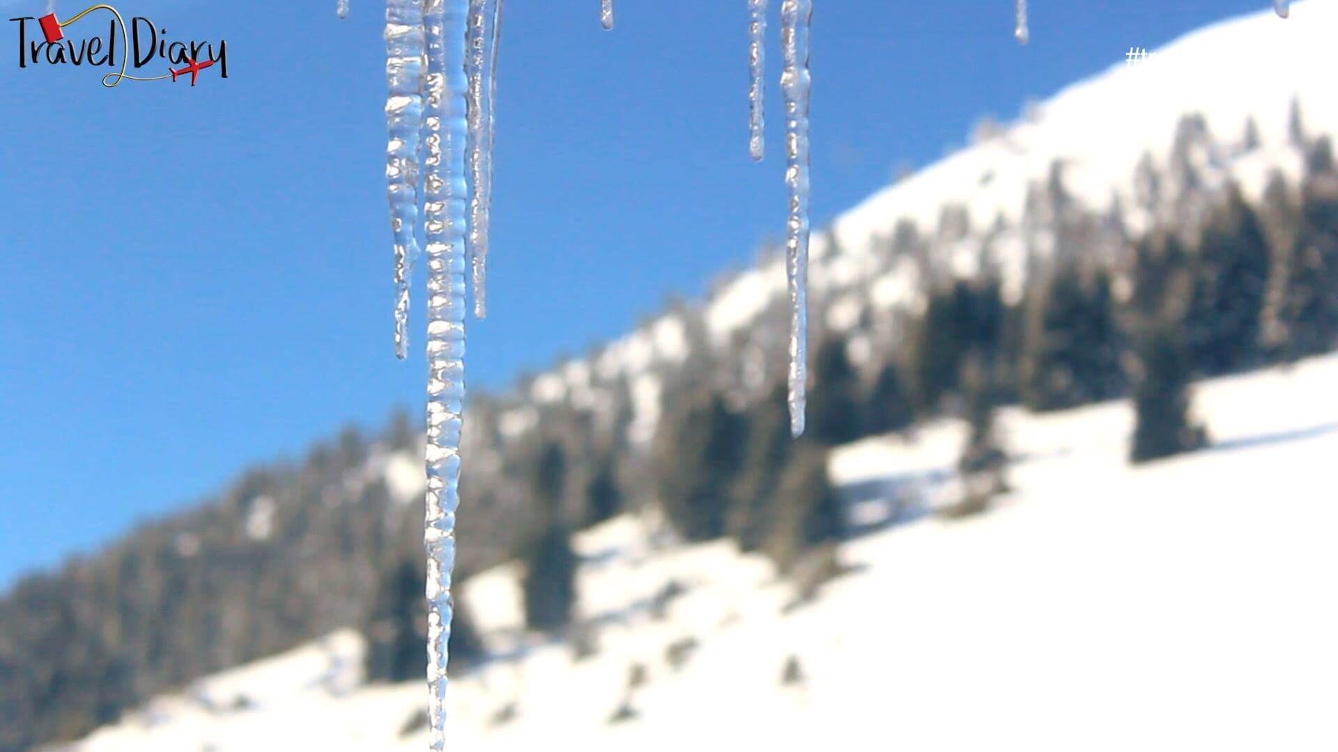 Βόλτα στο χιονισμένο Μαίναλο! (Βίντεο)