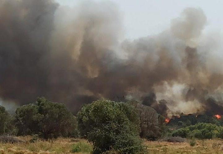 Ρόδος: Μεγάλη φωτιά σε δασική έκταση στην Παντάνασσα – Εκκενώνεται η Κοιλάδα των Πεταλούδων – Επιχειρεί και το Beriev-200